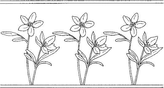 patron de flores 3