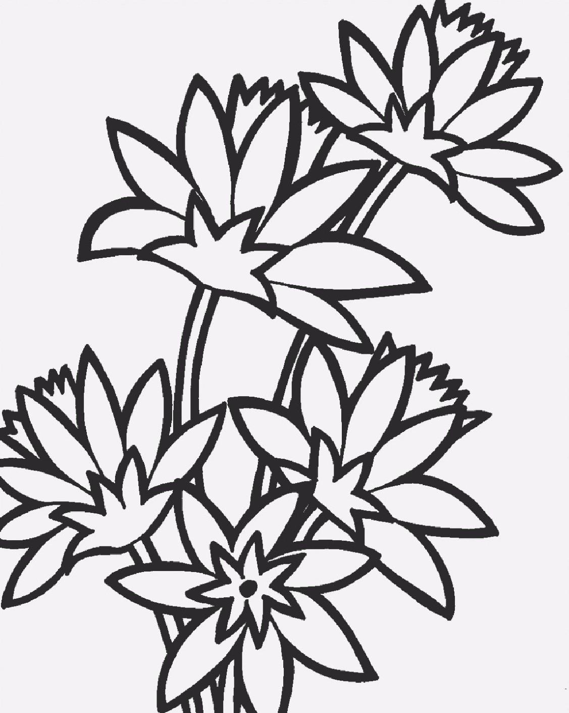 Flores Patrones Gratis Para Pintar En Tela Manualidades Blog