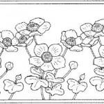patron de flores 4